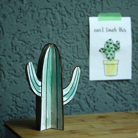 cactus-diys